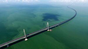 """曾为港珠澳大桥建设""""保驾"""